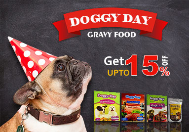 Doggy Day Gravy Food